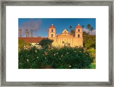 Rose Garden At Santa Barbara Mission Framed Print by Connie Cooper-Edwards