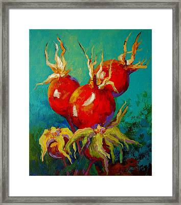 Rose Hips Framed Print by Marion Rose