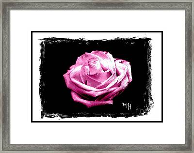 Rose On Black Framed Print by Marsha Heiken