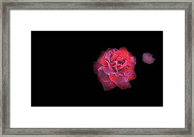 Rose On Square Pattern Framed Print by Nat Air Craft