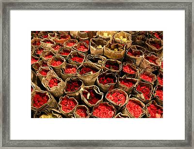 Rose Rolled In Newspaper Framed Print by Minaz Jantz