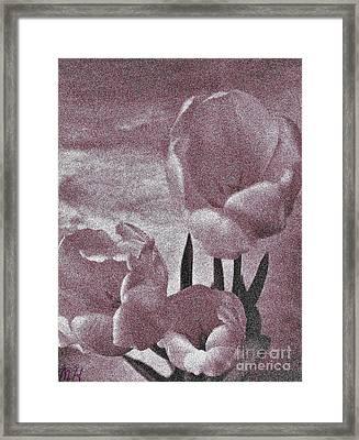 Rose Tulips Framed Print by Marsha Heiken
