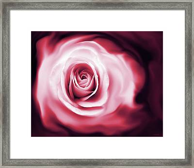 Rose's Whispers Magenta  Framed Print by Jennie Marie Schell