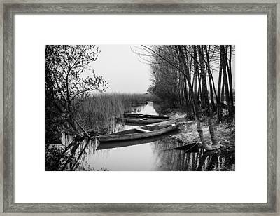Rowboats Framed Print by Marco Oliveira