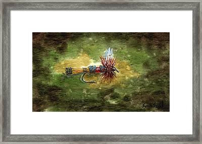 Royal Coachman Framed Print by Sean Seal
