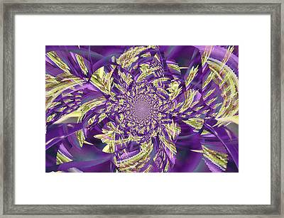 Royal Purple  Framed Print by Rose  Hill