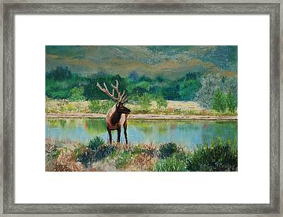 Royal Velvet Framed Print by Mary Benke