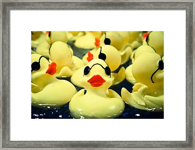 Rubber Duckie Framed Print by Colleen Kammerer