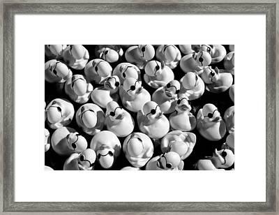 Rubber Duckies Framed Print by Todd Klassy