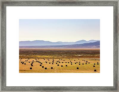 Ruby Valley Bales Framed Print by Todd Klassy