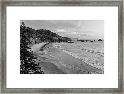 Rugged Beauty Framed Print by Don Schwartz