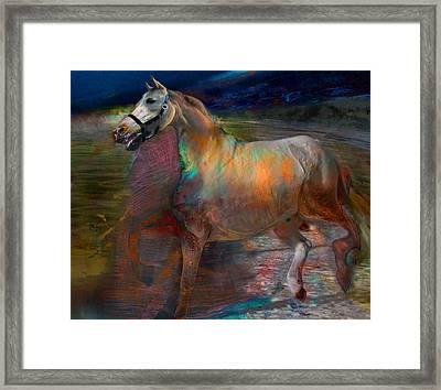 Running Horse Framed Print by Henriette Tuer lund
