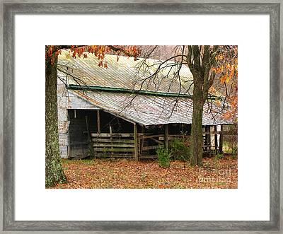 Rural Framed Print by Amanda Barcon