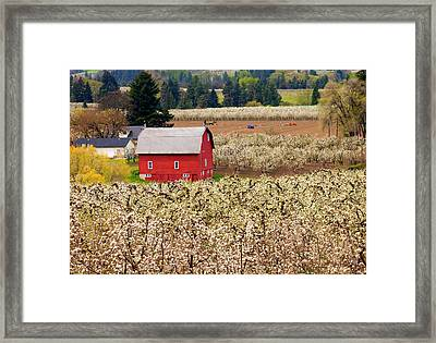 Rural Color Framed Print by Mike  Dawson