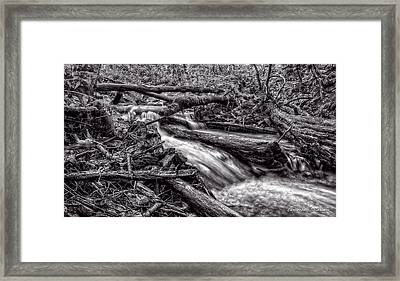 Rushing Stream - Bw Framed Print by Christopher Holmes