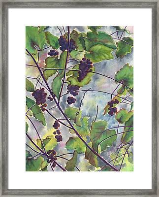 Russian Grapes Framed Print by Marsha Elliott