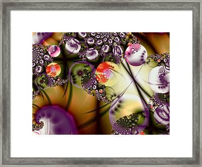 Rusted Spheres Framed Print by Sharon Lisa Clarke