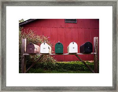 Rustic Beauty Framed Print by Parker Cunningham