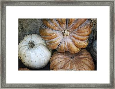 Rustic Pumpkins Framed Print by Joan Carroll