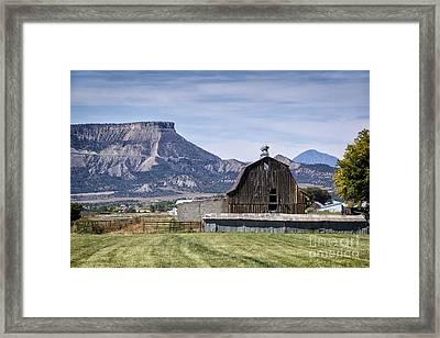 Rustic Rural Mancos Colorado Framed Print by Priscilla Burgers