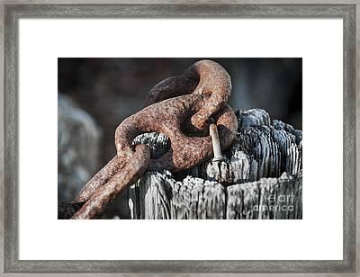Rusty Iron Chain Railing Fragment Framed Print by Elena Elisseeva