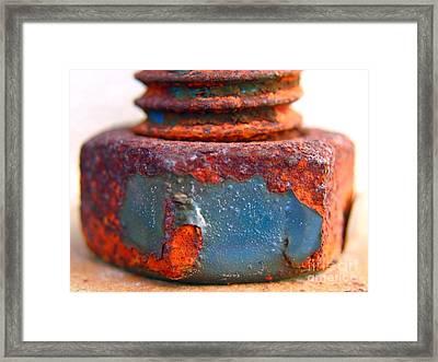 Rusty Screw And Bolt Framed Print by Yali Shi