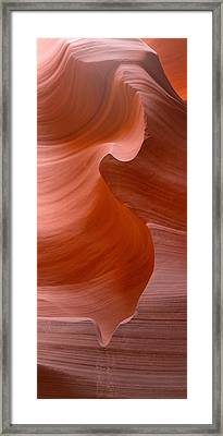 S Framed Print by David Andersen