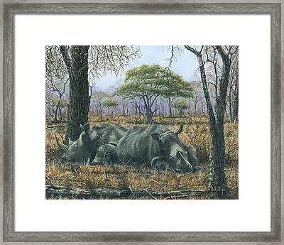 Sabi Sand Siesta Framed Print by Richard Harpum