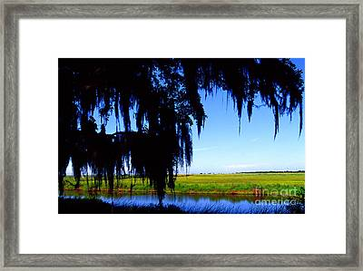 Sabine National Wildlife Refuge Framed Print by Thomas R Fletcher