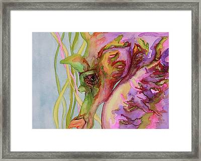 Sable The Seahorse Framed Print by Gayle  George