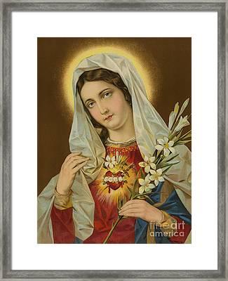 Sacred Heart Of The Virgin Mary Framed Print by European School