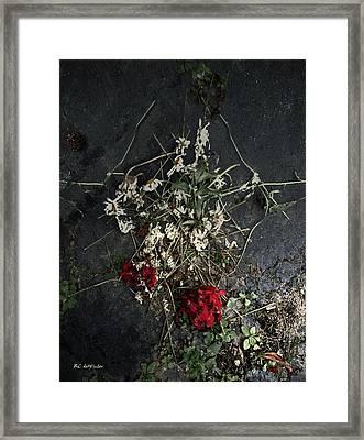 Sad Remains Framed Print by RC deWinter