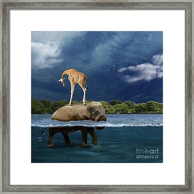 Safe Framed Print by Martine Roch