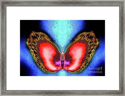Saffron Winterberry Framed Print by Raymel Garcia