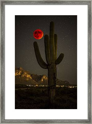Saguaro And The Super Bloodmoon Framed Print by Chuck Brown