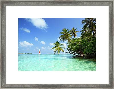 Sail Boat, Indian Ocean Framed Print by Matteo Colombo