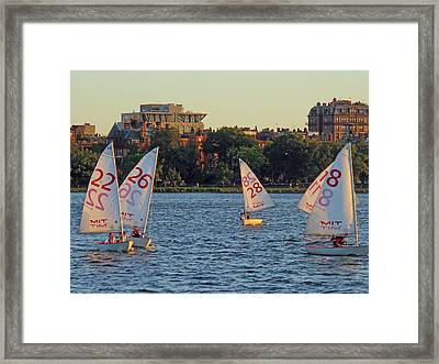 Sail By The Numbers Framed Print by Barbara McDevitt