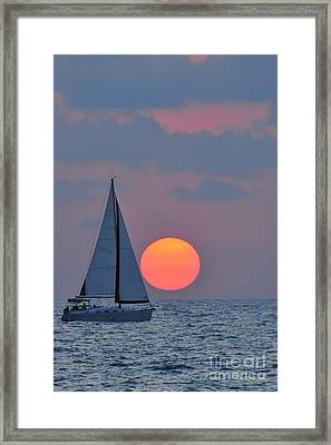 Sailboat At Sunset  Framed Print by Shay Levy