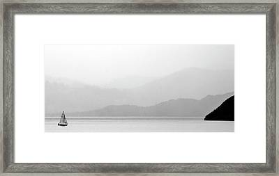 Sailboat On New Zealands Cook Strait Framed Print by Mark Duffy