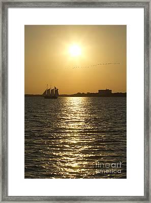 Sailboat Sunset On The Charleston Harbor Framed Print by Dustin K Ryan
