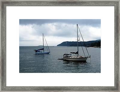 Sailboats In Bar Harbor Framed Print by Linda Sannuti