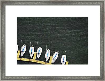 Sailboats Framed Print by Sandy Taylor