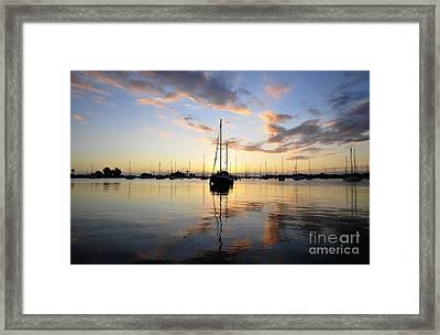 Sailors Delight Framed Print by David Lee Thompson
