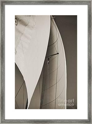 Sails Framed Print by Dustin K Ryan