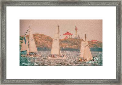 Sails In The Mist Framed Print by Wendi Donaldson Laird