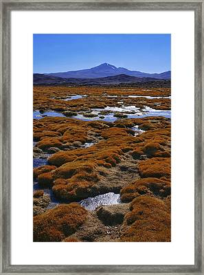 Salar De Uyuni Tour 22 Framed Print by Skip Hunt