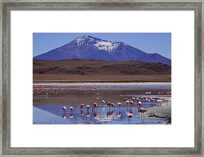 Salar De Uyuni Tour 39 Framed Print by Skip Hunt