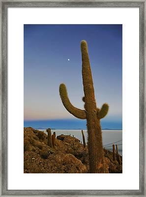 Salar De Uyuni Tour 53 Framed Print by Skip Hunt