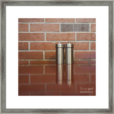 Salt And Pepper Shakers Framed Print by Sam Bloomberg-rissman