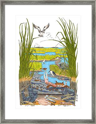 Salt Marsh Framed Print by John Meszaros